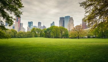 5 Cities Finding Innovative Ways to Go Green