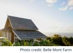 Belle Mont Farm