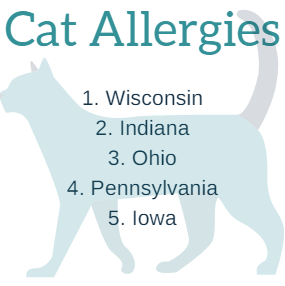 Cat Allergies (State Names)