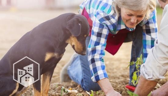 Company Spotlight: Farm Dog Naturals