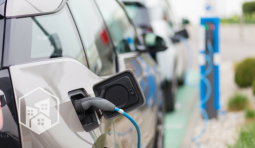 Who's Searching for Electric Cars? Take a Look at the Trends