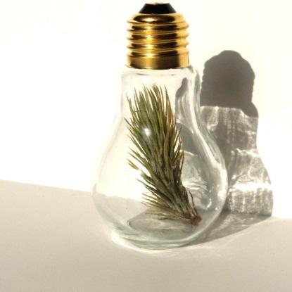 dry vase
