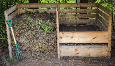 6 Tips for More Effective Composting