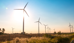 The biggest wind farms in Texas
