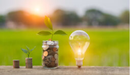 Now could be the time to invest in green energy stocks